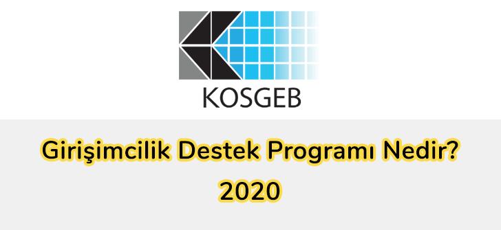 Girişimcilik Destek Programı Nedir? 2020