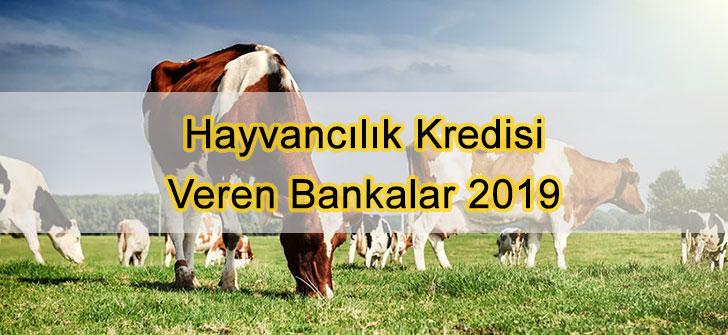 Hayvancılık Kredisi Veren Bankalar 2019