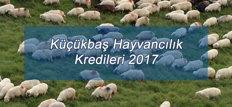 Küçükbaş Hayvancılık Kredileri 2017