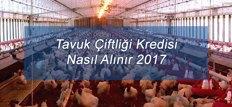 Tavuk Çiftliği Kredisi Nasıl Alınır 2017